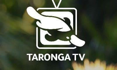 Taronga Zoo Live Streaming